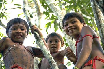 Yanomami Mädchen zwischen den Bäumen