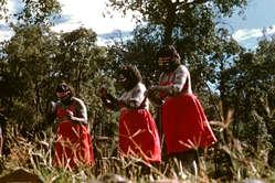 Tanzende Aborigines, Australien.
