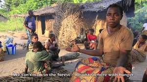 World Wildlife Day: tribespeople denounce persecution in the name of 'conservation'