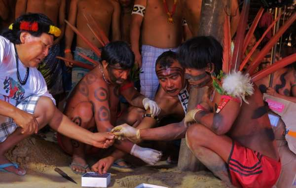 """Davi Kopenawa and other Yanomami burying recently returned blood samples in a funerary ceremony, April 2015."""