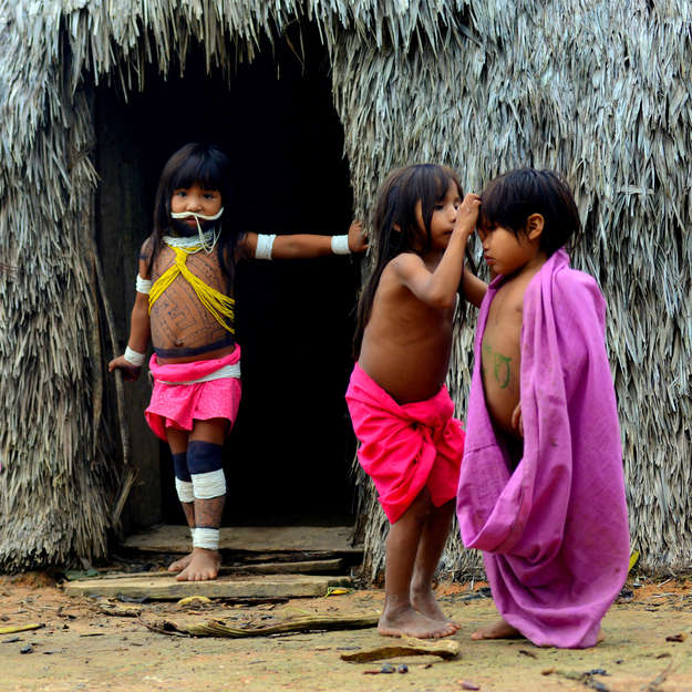 cracked undiscovered tribes in the amazon