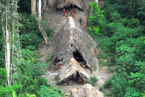 Uncontacted Indians in the Brazilian Amazon, May 2008. Many are under increasing threat from illegal logging over the border in Peru.
