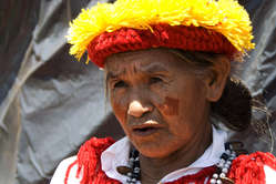Nearly all Guarani, such as this woman&apos;s community, have seen their land taken for ranching or sugar cane production.