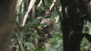 The last of the Kawahiva are forced to live on the run from armed loggers and powerful ranchers. Still from unique footage taken by government agents during a chance encounter.
