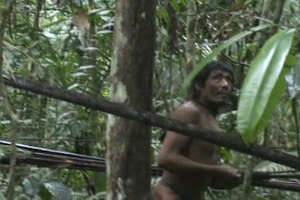 Victory! Survival campaign to save uncontacted Indians triumphs!