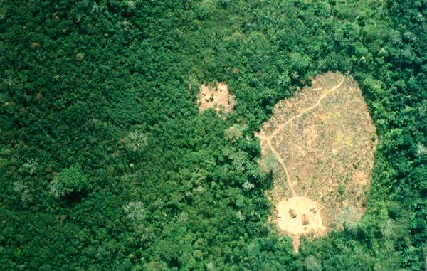 Isolated Uru Eu Wau Wau villages seen from the air, Brazil