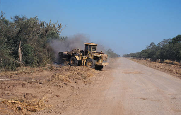 A bulldozer clears forest belonging to Ayoreo-Totobiegosode Indians, Paraguay