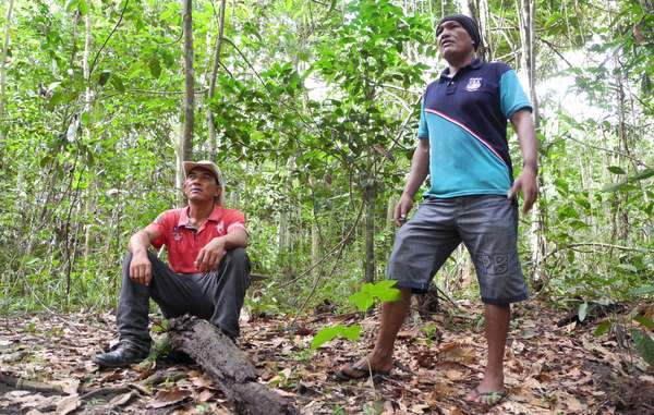 """Olimpio and Franciel, coordinators of the Guajajara Guardians, are determined to protect the forest for their uncontacted Awá neighbors."""