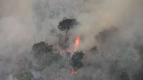 Brazil: Amazon fires threaten to wipe out uncontacted Indians