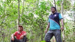 Amazzonia: incendi minacciano di sterminare gli Indiani incontattati
