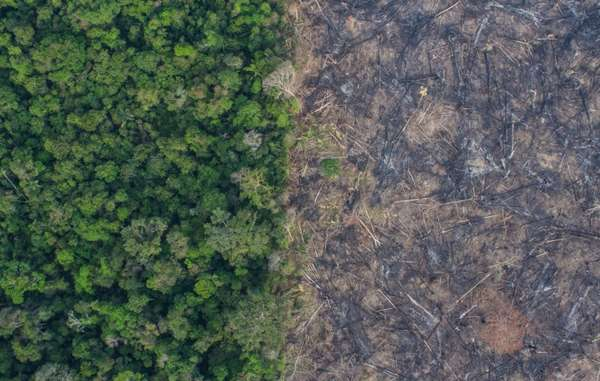 Clear felling and burning of forest in Rôndonia photographed from the air by Brazilian NGO Kaninde, close to uncontacted Indians and the Uru Eu Wau Wau