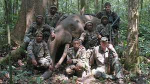 """Billionaire's elephant-hunting safaris implicated in """"Pygmy"""" abuses"""