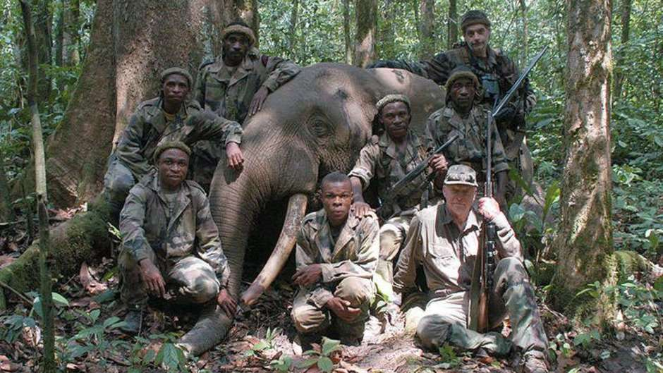 Billionaire banker's trophy-hunting operation implicated in abuse of Baka hunter-gatherers