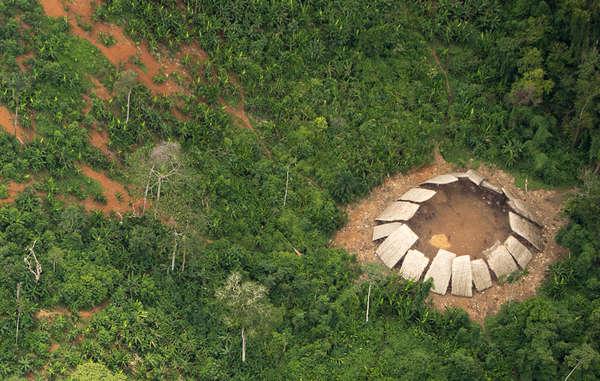 Il mese scorso Survival ha diffuso queste straordinarie immagini aeree di un gruppo di circa 100 Yanomami incontattati. I tagli ai finanziamenti e altri progetti del governo potrebbero rendere questi gruppi estremamente vulnerabili.