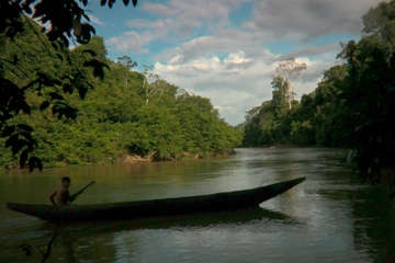 Ein Yanomami-Junge rudert sein Kanu zu seinem Dorf im brasilianischen Amazonasgebiet.