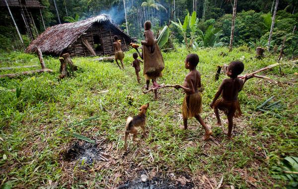 Frauen und Kinder vom Volk der Kombai kehren mit Feuerholz und Essen nach Hause zurück, das sie in den Wäldern gesammelt haben.