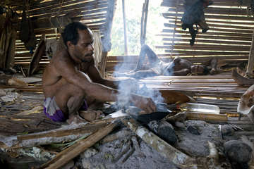 Korowai man baking sago over the fire, West Papua.