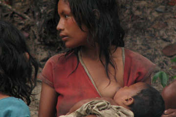 Young Pirahã mother with her child, Brazil. The small Pirahã tribe will be affected by the Madeira river dams planned in the western Amazon. Like many tribal peoples in thre region, they heavily depend upon the river and forest for their livelihood, homes and lives.