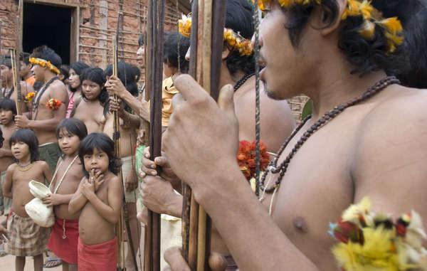 Die brasilianischen Awá-Indianer sind das bedrohteste Volk der Welt.