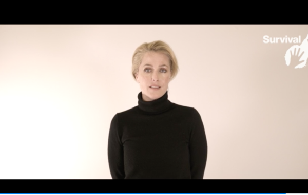 Actress and Survival International ambassador Gillian Anderson fronts Survival's global campaign for uncontacted tribes.