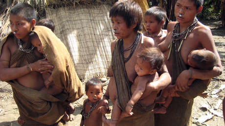 Epidemic kills recently-contacted tribe's children