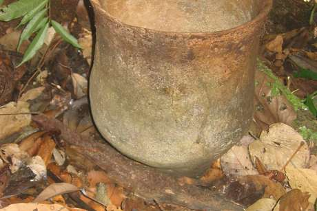 Uncontactedpot_460_landscape