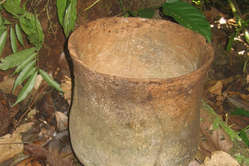 Ceramic pots found in the Isconahua reserve are evidence of the presence of these isolated Indians.