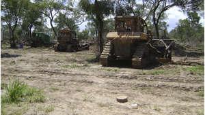 Bulldozers_300_wide