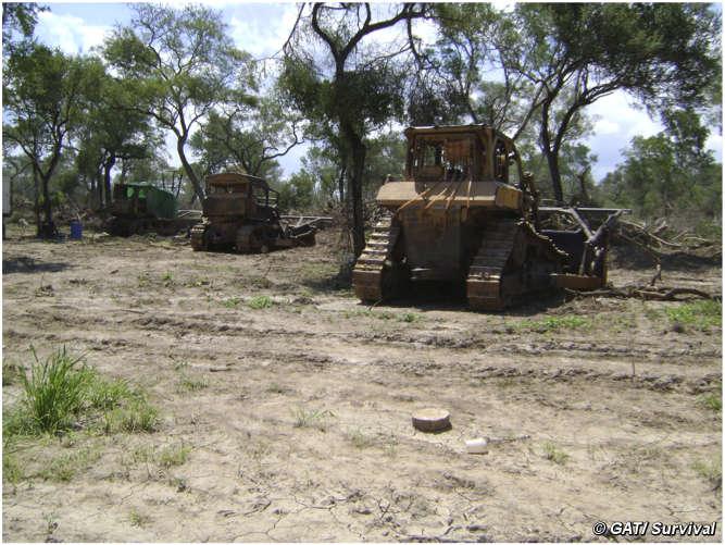 Excavadoras empleadas para la deforestación ilegal, fotografiadas por investigadores del Gobierno.