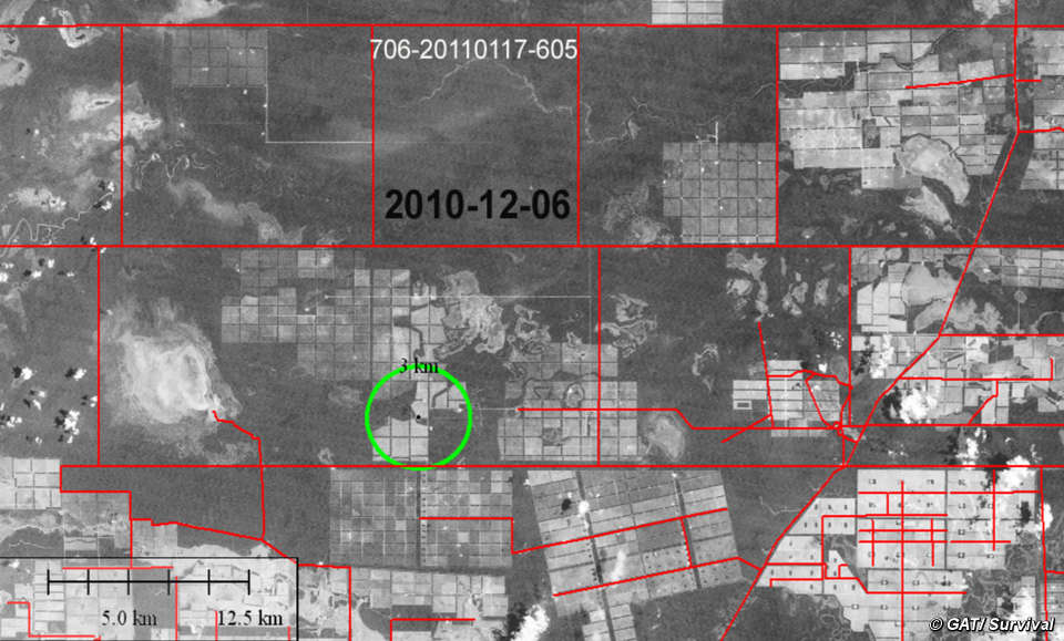 Deforestación ilegal (señalada) de territorio ayoreo.