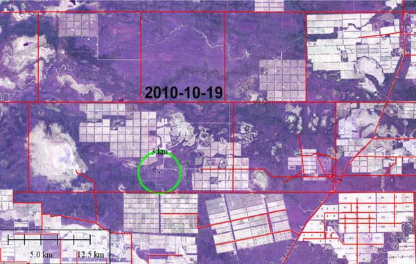 Illegal deforestation (circled) October - December 2010. Much of the surrounding forest has already been (illegally) cleared. 