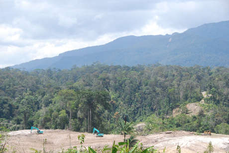 Bulldozers-clear-land-for-oil-palm-plantations-metalon-sarawak_460_landscape