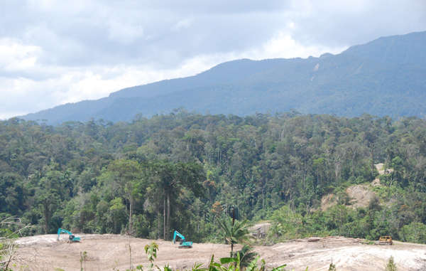 Bulldozers clear land for oil palms, Metalon, Sarawak.