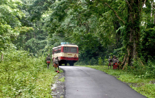 Jarawas on the Grand Trunk Road of the Andaman island