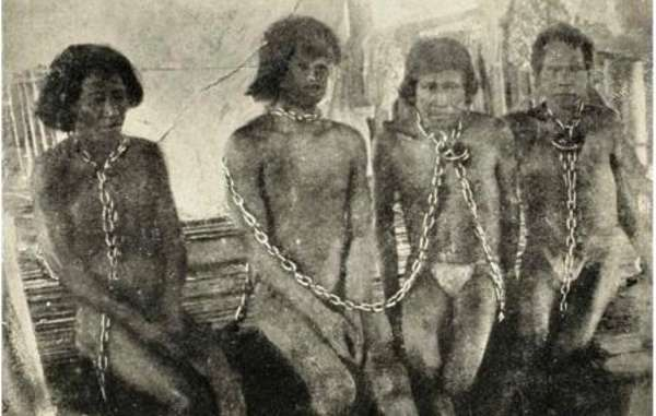 Thousands of Amazon Indians were enslaved and killed during the rubber boom