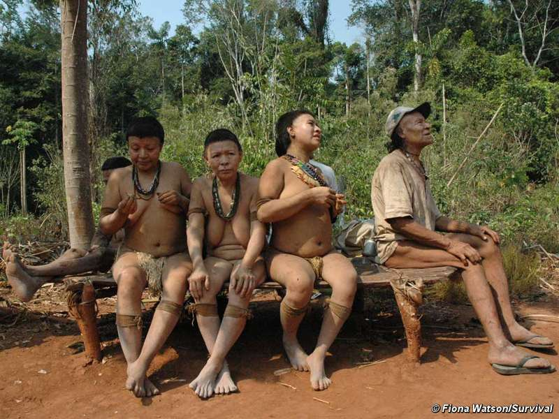 The last six surviving Akuntsu. When they die, the tribe will become extinct.  © Fiona Watson/Survival