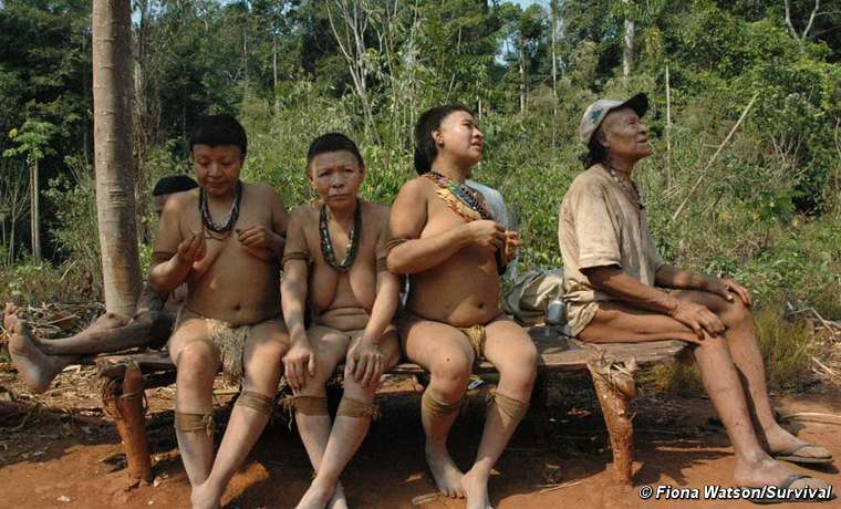 The Akuntsu are a tiny Amazonian tribe of just five individuals. They are the last known survivors of their people and live in Rondônia state, western Brazil.