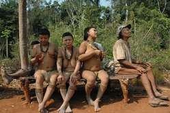 Ururú était la doyenne des survivants du génocide des Akuntsu.