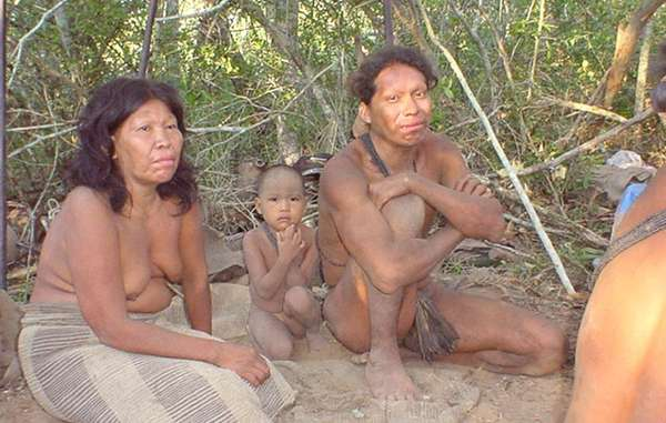 Ayoreo following first contact in 2004. Uncontacted Ayoreo are forced to flee from bulldozers destroying their forest home.