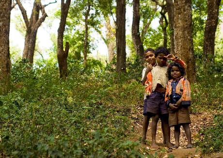 Bambini Soliga giocano in una radura della foresta, in una delle riserve delle tigri dell'India.