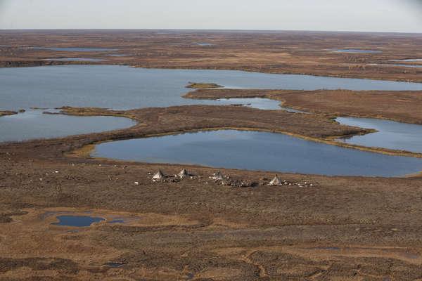 Nenets kampement, Jamal-schiereiland, Rusland