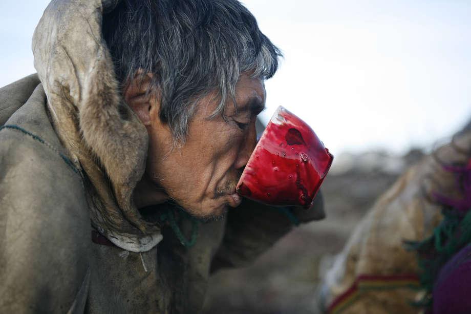 The Nenets of Siberia - Survival International