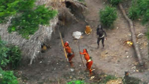 Defending tribes' right to remain uncontacted
