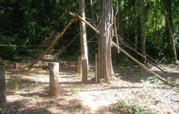 A loggers' camp found by CIMI 400 meters from uncontacted Awá