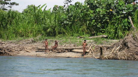Alarm over tourists' encounters with uncontacted Indians in Peru