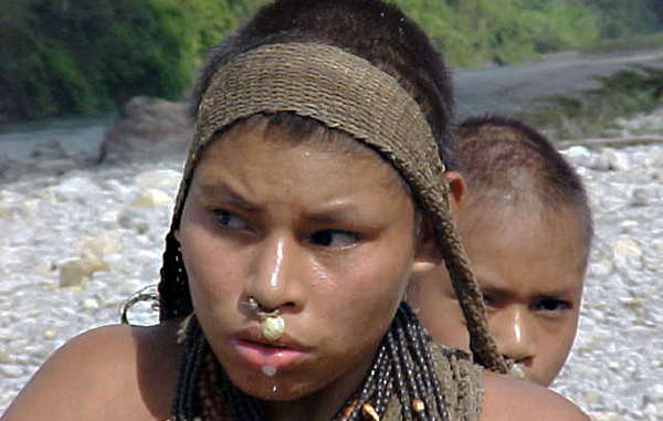 A Nanti woman in south-east Peru.