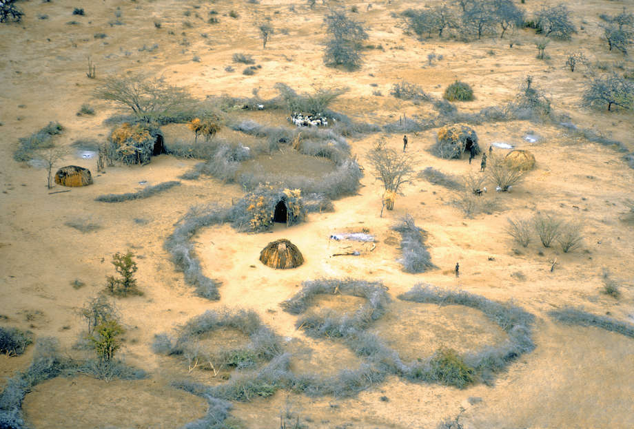 Masai - Survival International
