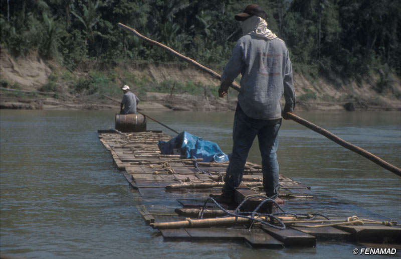Actividad maderera en Madre de Dios, sureste de Perú.