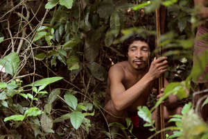 The Awá depend on hunting for their survival. Now they fear entering the forest because of illegal loggers in the area.