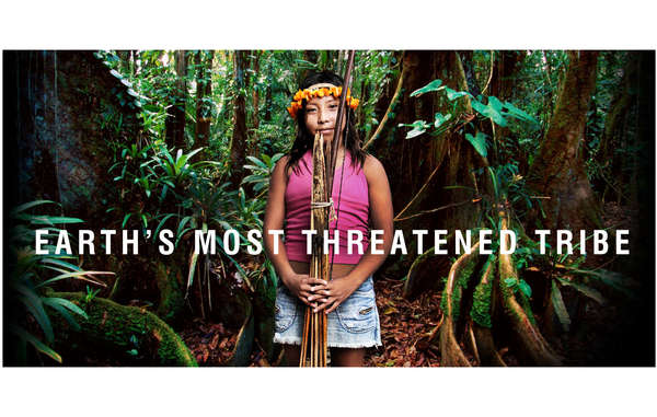 """Brazil's Awá tribe are the Earth's most threatened tribe. """